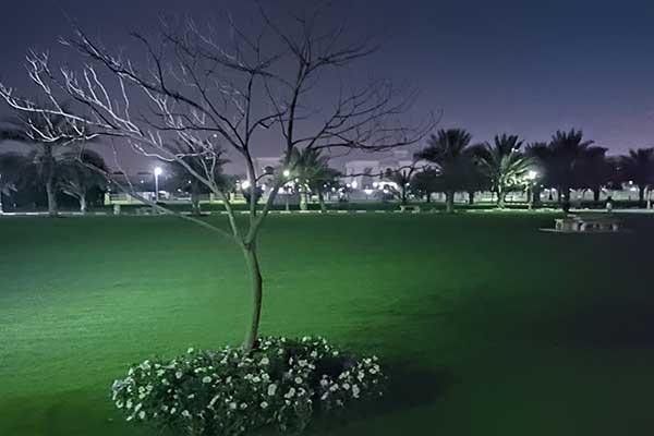 Elyash_Park