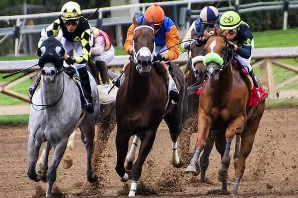 H_H_ Dr_Sheikh_Sultan_Bin_Khalifa_Bin_Zayed_Al_Nahyan_Race_Cup