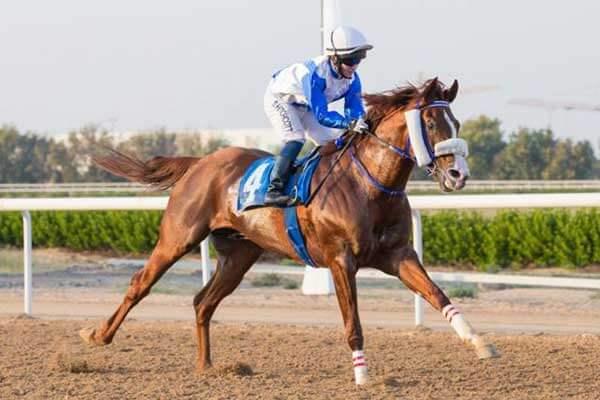 H.H. Sharjah Crown Prince Cup